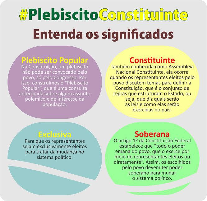 Plebiscito Reforma Política-Explicações