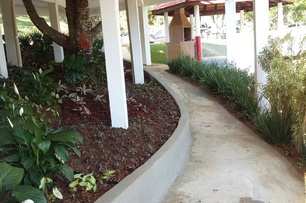 Um jardim foi feito no entorno da jaqueira